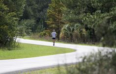 Flatwoods Park in northeast Hillsborough County offers a seven-mile paved loop road where cars and other vehicles are prohibited -- perfect for safe running, cycling and walking away from Tampa's developed landscape. The Morris Bridge well field is located within the park, and well houses and wildlife can be observed along the trail.
