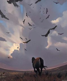 The Art Of Animation, Xuhui