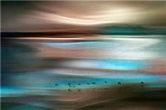"""Migrations"" by Ursula Abresch"