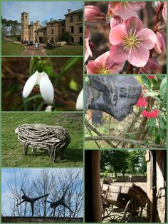 Cambo House Kingsbarns - open all year round, and always something to see, including a wonderful sculptures.