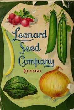 1909 Leonard Seed Co Catalogue back cover Garden Catalogs, Plant Catalogs, Seed Catalogs, Printable Flower Pictures, Seed Art, Vegetable Illustration, Vintage Seed Packets, Seed Packaging, Catalog Cover