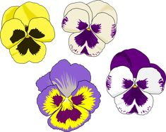 Pansy Selection by @cookieater, Selection of four pansies. , on @openclipart