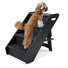 """awesome COZIWOW 21 Inches Wooden Dog Stairs for High Beds Sofa, Folding Pet Steps Collapsible Ladder for Small Medium Dogs Cats : Each step has enough size and height (14""""L*5.8""""W*5""""H) for small or medium size pets getting up to sofa, bed, chairs, cars. Each step has a load capacity of 80lbs, which effectively ensures safety and stability. : The product itself is made of pine wood, using the A-f... Dog Stairs, High Beds, Pet Steps, Iron Pipe, Medium Dogs, Dog Supplies, Pet Accessories, Sofa Bed, Small Dogs"""