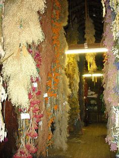 Howell's Greenhouse and Floral in rural Cummings, Iowa Go there just to go in hayloft of their barn and enter the magical world of dried flowers hanging from rafters.   https://www.facebook.com/pages/Howells-Greenhouse-Floral-and-Pumpkin-Patch/94996017152