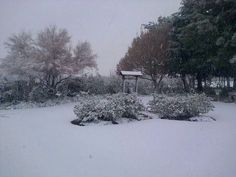 Snow in Ceres June 2014