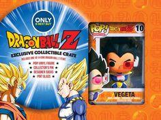 Dragon Ball Z - Dragon Ball Z Exclusive Collectible Crate - Multi