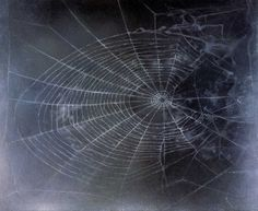 Spider web-one of the evil elements