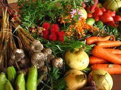5 vegetales al dia