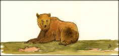 Grizzly Bear watercolor painting by Juan Bosco