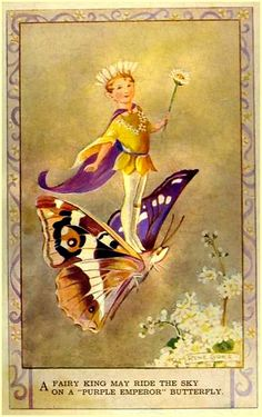 """A Fairy King may ride the sky on a """"Purple Emperor"""" butterfly."""