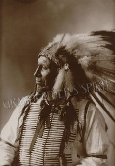 Where can i find primary sources on native american storytelling?
