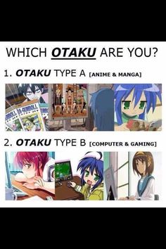 I am Otaku Type C [Anime, Manga, Computer, Gaming, Vocaloid, and about anything else that is made in Japan (cough cough food cough cough) like Konota Izumi from Lucky Star]. Which Otaku type are you? (God damnit... I was gonna say that.. Guess some Otakus think alike :3)