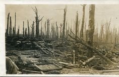 WW1 Photo post card of war-torn landscape on the Western Front…