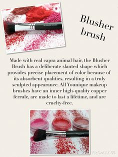 Younique Blusher Brush $25 LashLoveSociety.com