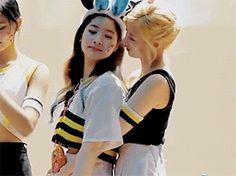 KPOP girls become lesbian Mamamoo, Kpop Girl Groups, Kpop Girls, 2ne1, Otp, Twice Album, I Am Statements, Lgbt Rights, Brave Girl
