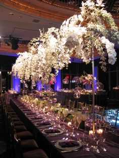 Last night, Tantawan Bloom was honored to bring to life this chic and sophisticated Bat Mitzvah at the Mandarin Oriental NY. Rinat & Joe were so lovely and it really made my job all that more r…