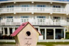 bird house - alternative money box for weddings
