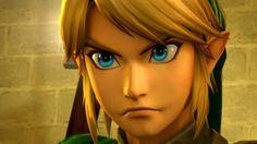 Hyrule Warriors Link, Wild Wolf, Legend Of Zelda Breath, Link Zelda, Breath Of The Wild, Memes, Disney Characters, Fictional Characters, Princess Zelda