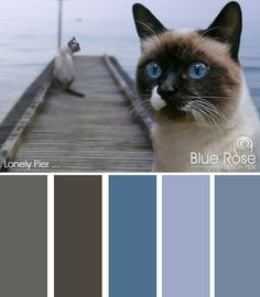 Color Inspiration: Lonely Pier