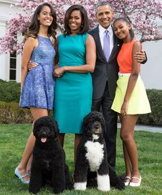 Take a look at the First Dogs living their best life in the White House.