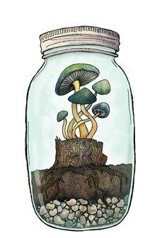 Illustration art shrooms watercolor jar mushrooms traditional ...
