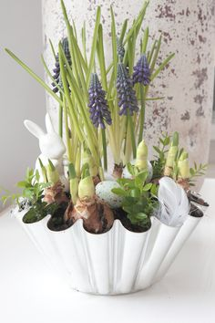 Muscari flowers and bulbs in vintageJelly Mold