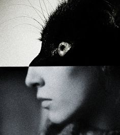 Untitled portrait by artist Brett Walker. Photomontage, White Photography, Monochrome Photography, Fashion Photography, Oeuvre D'art, Cool Photos, Interesting Photos, Pop Art, Illustration Art
