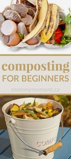 Container Gardening Composting for beginners - easy tips for you to compost successfully at home. - Composting for Beginners - Compost is a natural nutrient rich soil that anyone, even beginners, can make. You can compost tea bags, egg shells, and more. Garden Compost, Vegetable Gardening, Flower Gardening, Veggie Gardens, Flowers Garden, Planting Vegetables, Organic Gardening Tips, Urban Gardening, Gardening Hacks