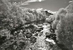 Classic Photography by Ralf@Uicker.de (Printorders please by E-Mail / Jedes Bild ist auch als Kunstdruck erhältlich. Bitte per E-Mail)