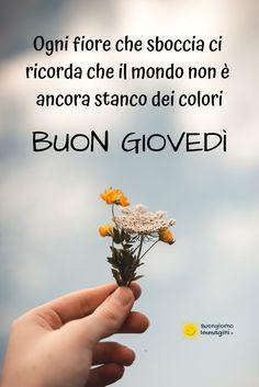 Good Night, Good Morning, Italian Greetings, Thursday, Smile, Pictures, Bonjour, Nighty Night, Buen Dia