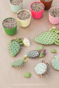 Propagate Cactus Pads Fill up some pots with soil to plant your cactus pads and grow new cacti!Fill up some pots with soil to plant your cactus pads and grow new cacti! Flower Bookey, Flower Film, Flower Names, Cactus Flower, Flower Pots, Mini Cactus Garden, Cactus Pot, Prickly Pear Cactus, Cactus Plants