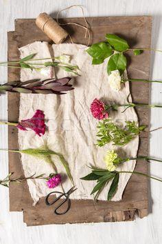 The flowers on white wooden background stock photo (c) master1305 (#8289038) | Stockfresh