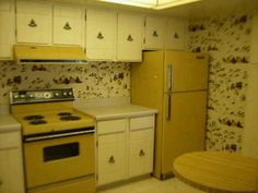 kitchens in 'harvest gold' (or avocado green or brown). After marrying out first kitchen was done in harvest gold. 1970s Kitchen, Vintage Kitchen, Cleaning Stainless Steel Appliances, Kitchen Appliances, Vintage Appliances, Gold Kitchen, Kitchen Decor, Dad's Kitchen, Deco Retro