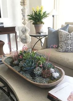 Checkout these succulent decoration ideas you can easily implement. Over thirthy unbelievable succulent decoration ideas for your home. Blooming Succulents, Types Of Succulents, Succulents In Containers, Cacti And Succulents, Planting Succulents, Succulent Gardening, Succulent Terrarium, Succulent Ideas, Organic Gardening