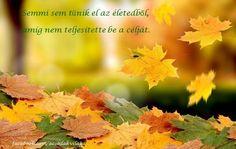 https://www.facebook.com/acsodakvilaga/photos/a.644370778918124.1073741828.641569292531606/839072139447986/?type=1