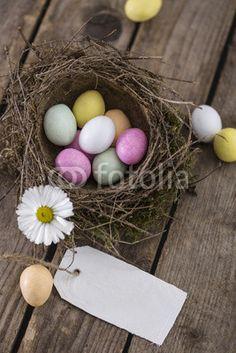 bunte Eier in einem Vogelnest mit Schild