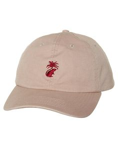 THE CRITICAL SLIDE SOCIETY PARATISE SNAPBACK CAP - TAUPE