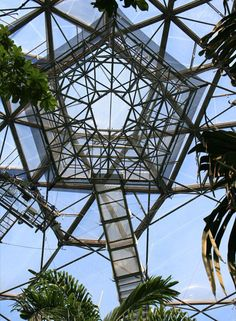 Eden Project - Tropical Rainforest Lookout