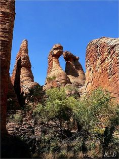 Dinosaur Rex Rock in the Lost City, Cape Crawford, NT, Australia