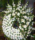 3 – Source by Funeral Flower Arrangements, Funeral Flowers, Floral Arrangements, Wedding Flowers, Casket Sprays, Memorial Flowers, Cemetery Flowers, No Rain, Arte Floral