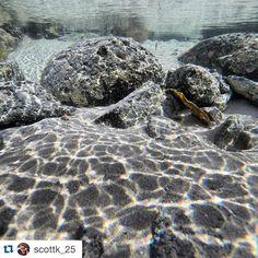 #Repost @scottk_25  Little underwater picture No fish but shows how clear the water is! #australia #oz #downunder #greatoceanroad #coast #coastaldrive #drive #road #roadtrip #melbourne #adelaide #hirecar #goprophotography #gopro #beahero #hero3 #excited #sunny #summer #hot #instadaily #instatravel #travelling #portfairy #destinationportfairy #love3284 #dpf3284 #ocean by destinationportfairy