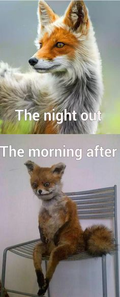 The night out Vs The morning after -   Misc