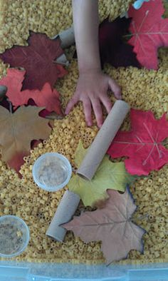pasta and silk leaves sensory table