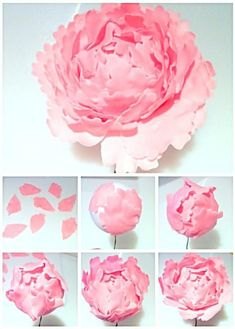 How to make peonies, ranunculus, and roses out of edible florist paste.Cherie Kelly's Sugar Peony, Ranunculus and Rose Pastel Colour Wedding Cake cheriekelly pretty sugar florist gum fondant paste petals wired unwired flowers steps by steps how to ma Sugar Paste Flowers, Icing Flowers, Fondant Flowers, Clay Flowers, Edible Flowers, Paper Flowers, Fondant Cupcakes, Cake Decorating Techniques, Cake Decorating Tutorials