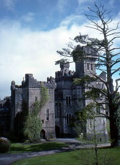 Ashford Castle, Cong, Ireland We're going to stay a night at this castle, possibly two!