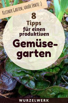 Kleiner Garten, große Ernte: Auch auf kleiner Fläche kann man eine Menge Gemüse anbauen. Hier kommen 8 Tipps für einen produktiven Gemüsegarten. #UrbanGardening #Garten