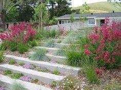 Картинки по запросу stepping stones landscape lighting Concrete Paving, Concrete Steps, Concrete Garden, Concrete Design, Terraced Landscaping, Modern Landscaping, Backyard Landscaping, Landscaping Company, Patio Stairs