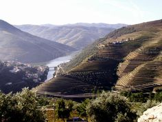 Pinhão, #Douro #Portugal Douro Valley, Five Star Hotel, In The Heart, Opera House, Douro Portugal, Mountains, Luxury, Building, Nature