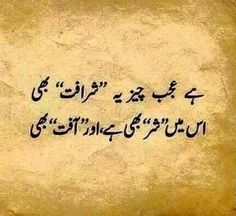 Image in Urdu Shyari & Batain ✍️حرف حرف اردو collection by Faizaツ Urdu Funny Poetry, Poetry Quotes In Urdu, Sufi Quotes, Best Urdu Poetry Images, Urdu Poetry Romantic, Love Poetry Urdu, My Poetry, Iqbal Quotes, Qoutes
