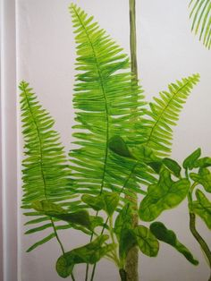 Ferns as part of mural of tropical victorian glasshouse plants in the toilet! By Sally Hancox, based in London, UK Victorian Greenhouses, Shed Doors, Faux Painting, Kew Gardens, Glass House, Ferns, Stencils, Plant Leaves, Tropical